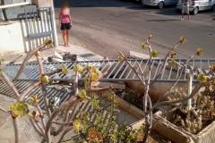 Incidente Cancello Casa
